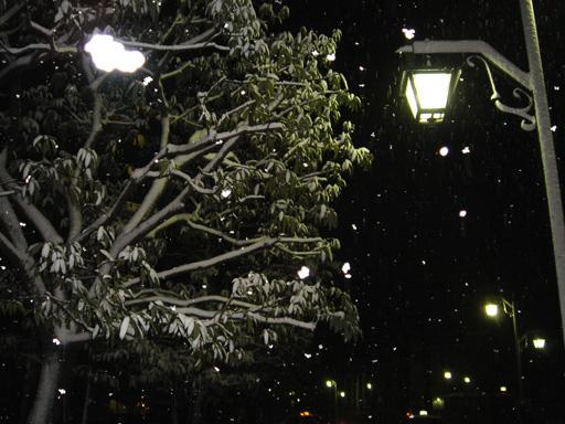070312 小 雪の夜.jpg