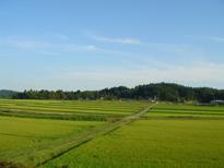 070816  s  風景.jpg