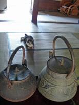 070816 s ネコと茶瓶1.jpg