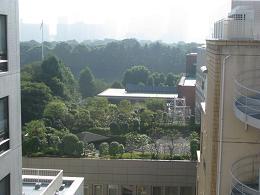 081025 s  空中庭園912.jpg