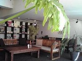 091124  s  Aura cafe1.jpg