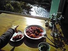091124  s  Aura cafe2.jpg