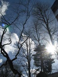 100209  s  sky.jpg