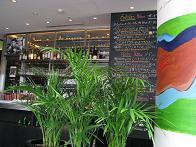 20090609  s  restaurant.jpg